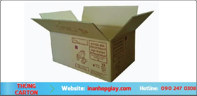 in thùng carton hcm